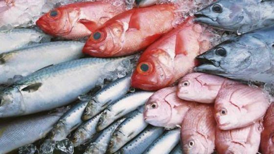 Maurice veut exploiter 13 000 à 26 000 tonnes supplémentaires de poisson