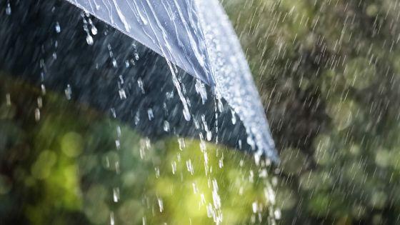 Météo : des averses orageuses attendues dans l'après-midi