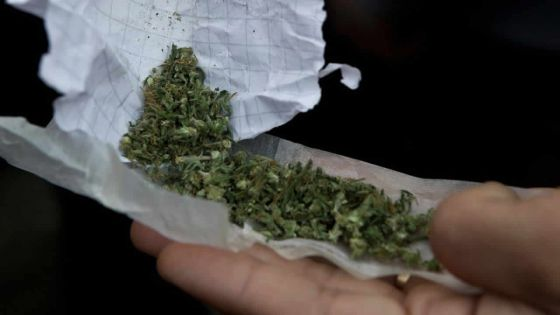 Dans un collège du Nord : du cannabis retrouvé sur un élève de 16 ans