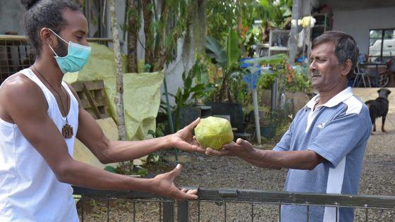 Une papaye, belle illustration de solidarité mauricienne par temps de confinement