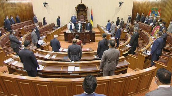 Parlement : le MV Wakashio au centre de la PNQ
