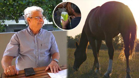 Hippisme - L'importance d'une bonne alimentation chez le cheval