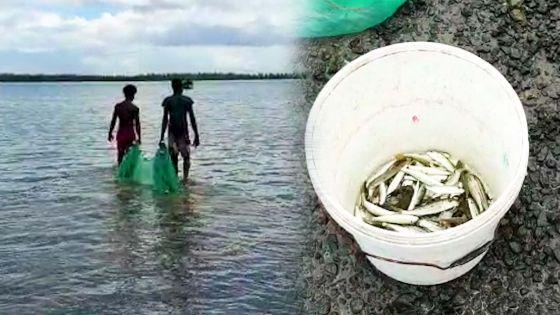 La Gaulette : des pêcheurs continuent à travailler
