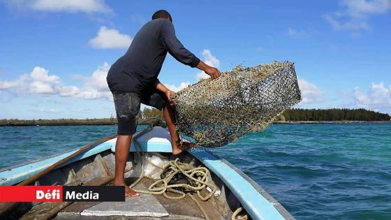 Wakashio : les activités de pêche dans les lagons du Sud-Est reprennent sous certaines conditions ce lundi