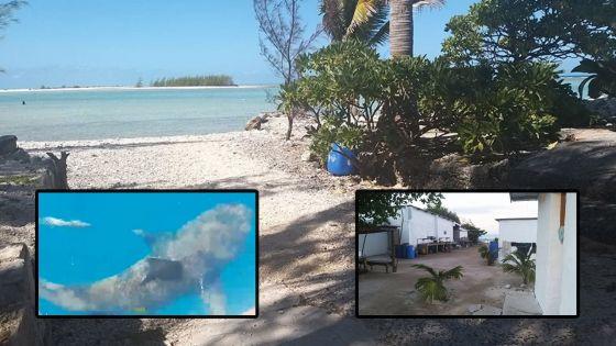 Saint-Brandon : l'île Raphaël, des pêcheurs, des garde-côtes et des requins bouledogues