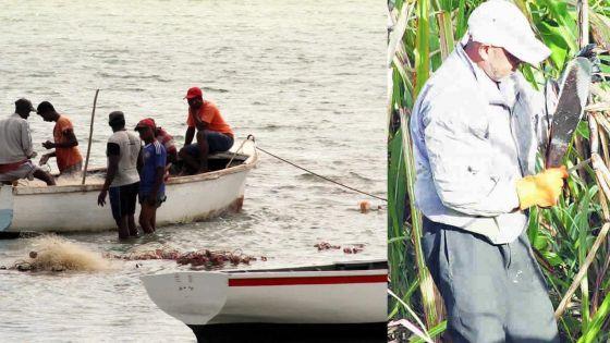 Budget : des pêcheurs et petits planteurs se mobilisent pour dénoncer le « laxisme » du Premier ministre