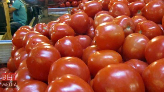 Consommation : la pomme d'amour à Rs 175 le demi-kilo