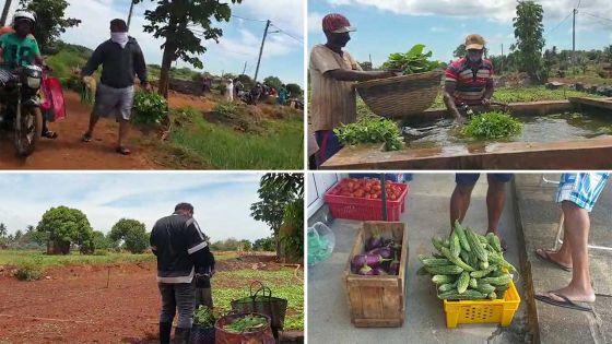 Les consommateurs à l'assaut... des plantations