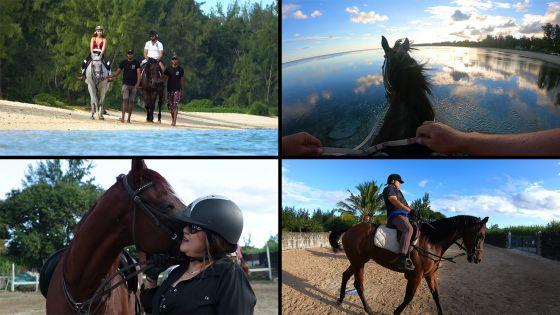 [Reportage] Le cheval, compagnon de route pour se sentir bien dans sa peau