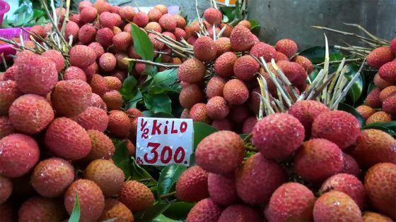Letchis à Rs 300 le demi-kilo : un prix qui laisse un goût aigre-doux