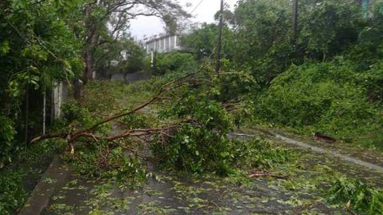 [En images] Désolation à l'île Rodrigues après le passage du cyclone tropical intense Joaninha