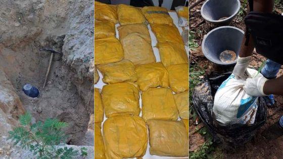 Saisie record de drogue : plusieurs suspects dans le collimateur de l'Adsu