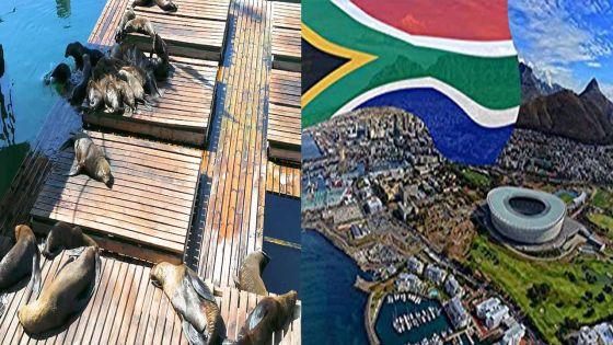 Cape Town cité de rêve