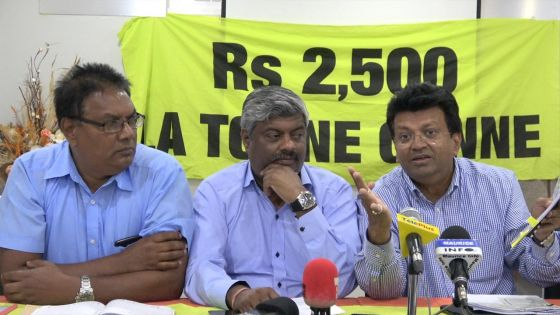 Mauritius Sugar Syndicate : une commission d'enquête réclamée par le mouvement des petits planteurs