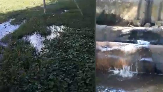La Marie : un tuyau de la CWA endommagé, l'eau envahit un terrain de foot