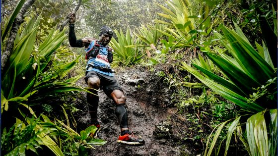 Dodo Trail 2019 : runners … à vos baskets !
