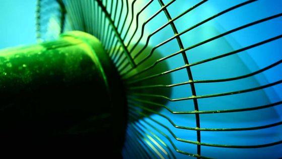Beau-Bassin : un ventilateur explose, vent de panique chez la famille Gopee