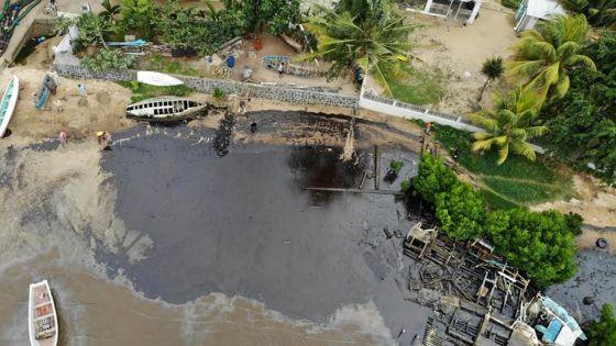 Marée noire : Vieux-Grand-Port meurtri, images d'en haut