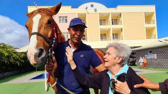 BG Care Home : la thérapie par le cheval pour les résidents âgés