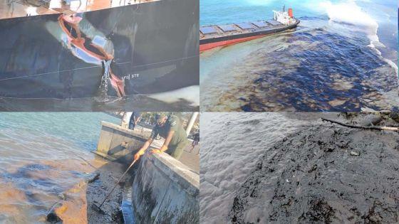 [En images] Fuite d'huile du Wakashio : un bien triste 6 août
