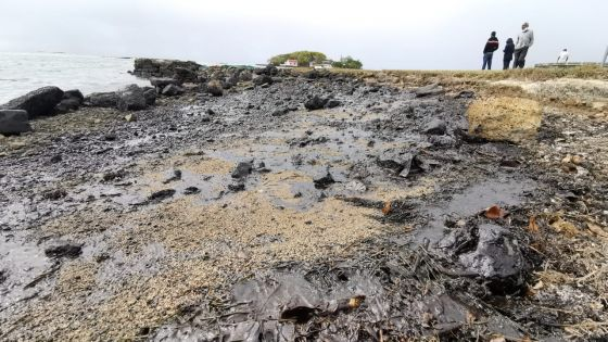 [En images] Catastrophe écologique : scènes de désolation au Mahébourg Waterfront