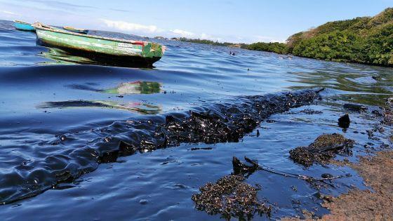 Marée noire à Maurice : plus de 85 000 euros récoltés par un journaliste français pour Eco-Sud