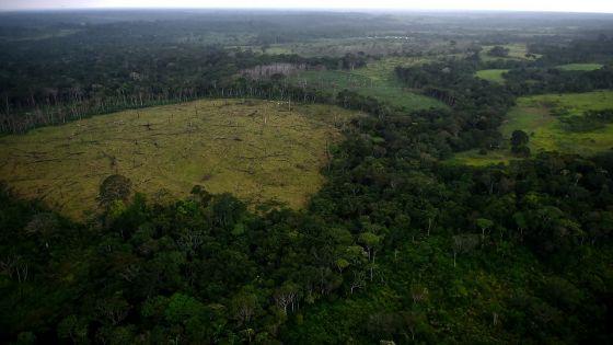 Les deux-tiers de la faune sauvage ont disparu en moins de 50 ans, selon le WWF