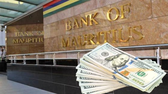 BOM : les réserves en dollars en baisse