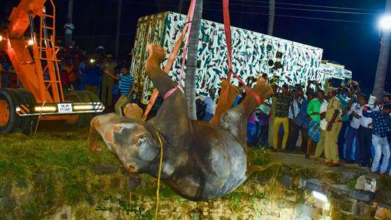 Sauvetage éléphantesque en Inde