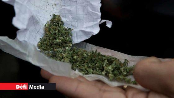 Réseau dans l'Ouest : frère et sœur coffrés pour trafic de drogue