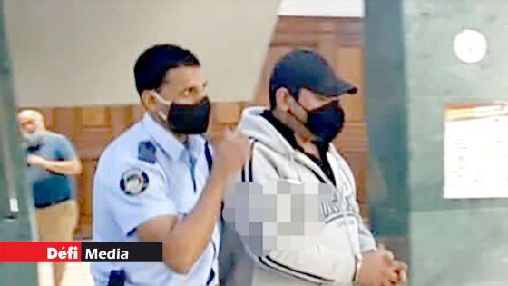 Un homme attaqué par deux rottweilers : le maître des molosses reste en détention