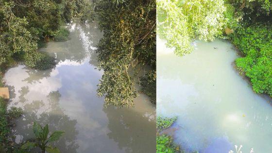 Les habitants de Saint-Pierre scandalisés: L'eau de la Rivière-du-Pouce polluée