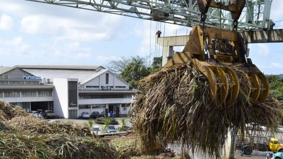 Sugar Investment Trust: Des coûts additionnels de Rs 40 M font polémique