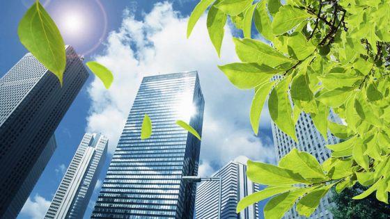 Plaisance Eco-city: la classe moyenne dans le viseur des promoteurs français