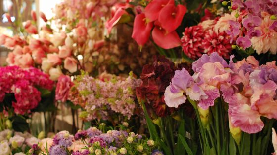 La vente des fleurs artificielles régresse