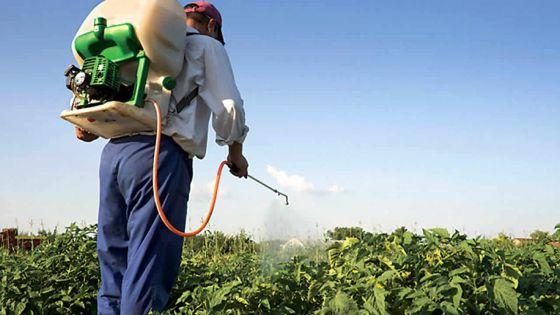LA GSEA part en guerre contre l'utilisation abusive des pesticides
