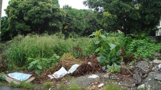 Hennessy Avenue, Quatre-Bornes: des citadins veulent transformer un terrain vague en parking