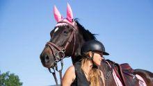 Kimberline Marchais : à cheval sur sa passion !