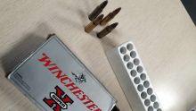 Des balles dans le sac d'un vétérinaire : un oubli qui lui coûte cher
