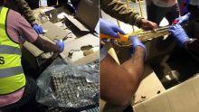 Saisie d'héroïne d'une valeur de Rs 82,5 millions : le suspect Shamlaul sous surveillance depuis quelque temps