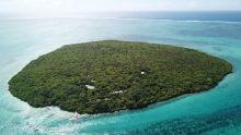 Mauritian Wildlife Foundation : L'Île aux Aigrettes ou l'Arche de Noé