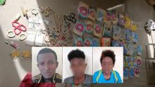 Vols dans le Sud : trois suspects dont deux mineurs arrêtés
