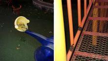À Quatre-Bornes : le jardin d'enfants de la municipalité en piteux état