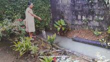 A Dubreuil : un refoulement d'eaux usées incommode une retraitée