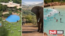 Sun City – Pilanesberg : célébrez la St Valentin en Afrique-du-Sud