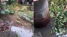 Morcellement Goolamally, Le Hochet-Terre Rouge : une cour inondée à cause de la décharge du voisin