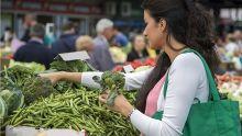 Légumes : mieux comprendre le mécanisme des prix