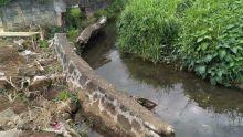 Municipalité de Vacoas/Phoenix : la chute d'un mur jouxtant la rivière de Mesnil provoque des débordements