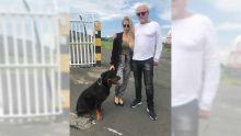 La mésaventure d'un Suédois qui voulait voyager avec son chien