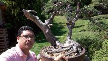 Xavier de Lapeyre : le bonsaï, tout un art